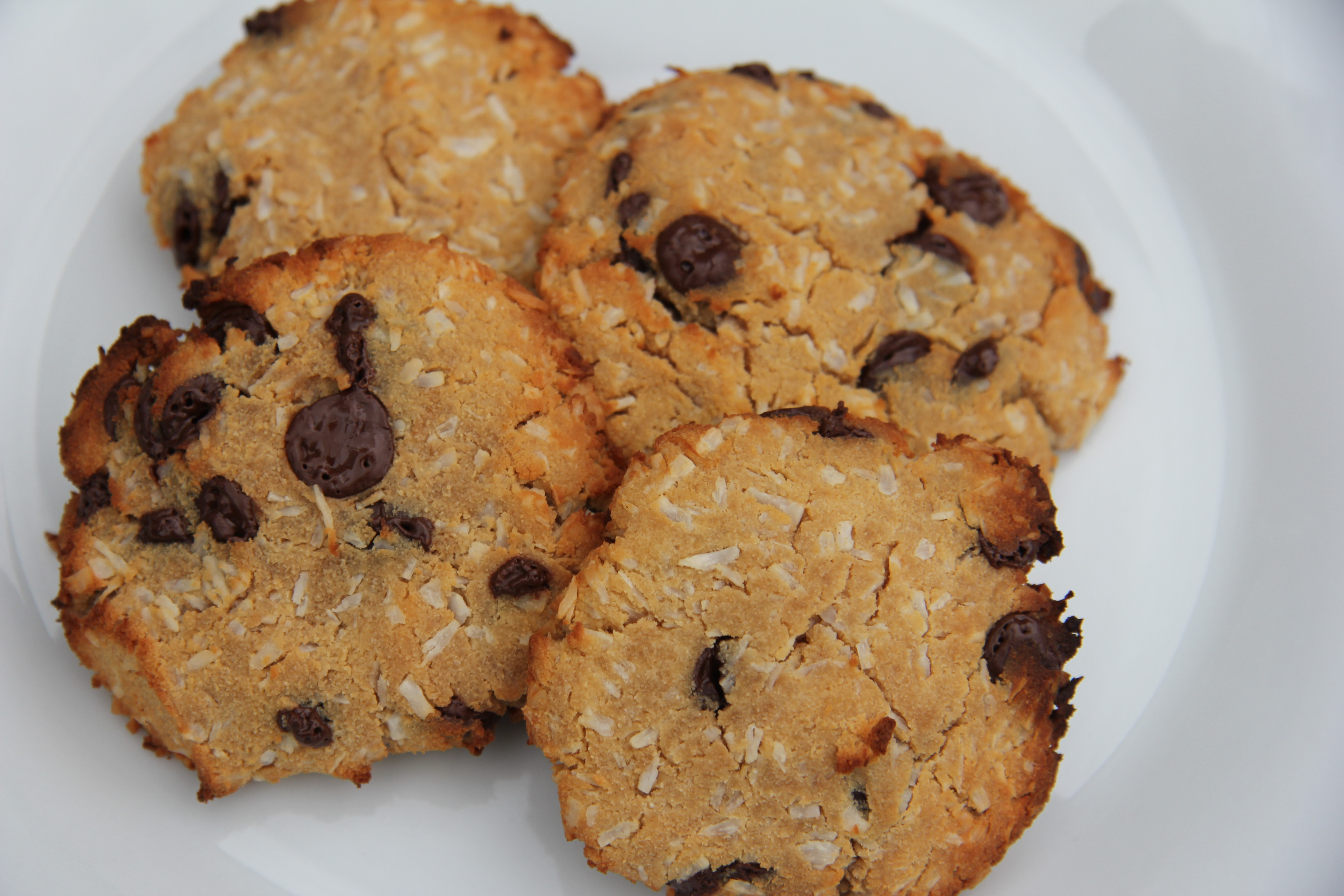 Coconut and Chocolate Chip Cookies (Coconut Flour) | Barbados Gluten ...